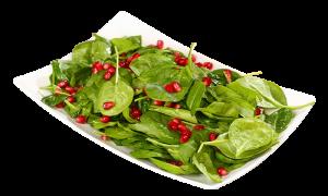 salata-spanac-cu-rodie-700x420