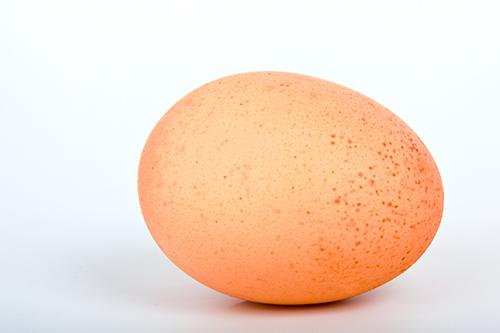 egg_191425